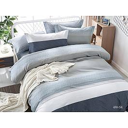 купить Постельное белье Cleo КПБ Сатин печатный 488 (1.5 спальный) по цене 2394 рублей