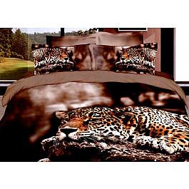 Постельное белье Tango КПБ Сатин дизайн 059-2 (Евро) все цены