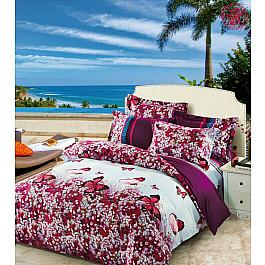 Постельное белье Tango КПБ Сатин дизайн 416 (2 спальный)