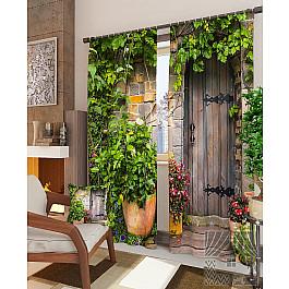 Фотоштора TomDom Фотошторы Загадочная дверь дверь nm27