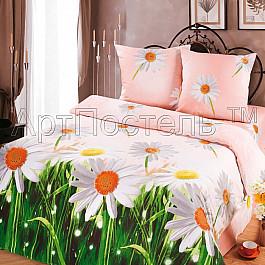 цена на Постельное белье Арт-постель КПБ бязь Зима-Лето арт. 609