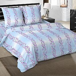 Постельное белье Арт-постель КПБ из бязи арт. 109 Радуга цветов (голубой) (2 спальный) кпб b 109