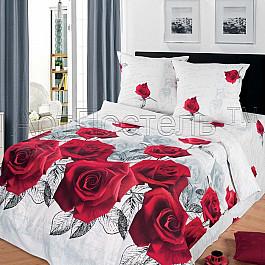 купить Постельное белье Арт-постель КПБ бязь премиум арт. 520