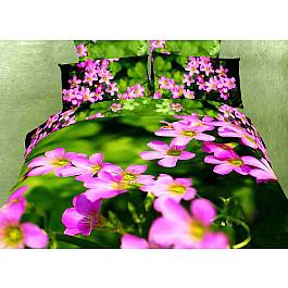 цена Постельное белье Tango КПБ Сатин дизайн 581 (1.5 спальный) онлайн в 2017 году