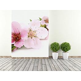 "Фотообои ""Цветок сакуры"", 194*270 см-A"