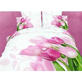 цена Постельное белье Famille Комплект постельного белья RS-86-e2 (Евро, 2 наволочки) онлайн в 2017 году