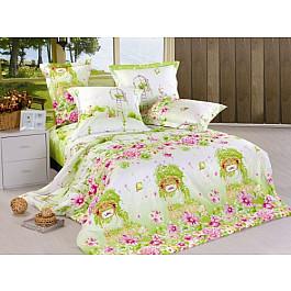 Постельное белье СайлиД Комплект постельного белья B-137-e (Евро) все цены