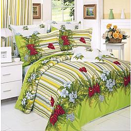 Постельное белье СайлиД Комплект постельного белья B-10-e (Евро) все цены