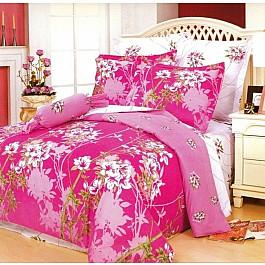 цена Постельное белье СайлиД Комплект постельного белья B-46-d (2 спальный) онлайн в 2017 году