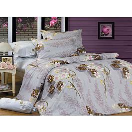 цена Постельное белье СайлиД Комплект постельного белья B-89-p (1.5 спальный) онлайн в 2017 году