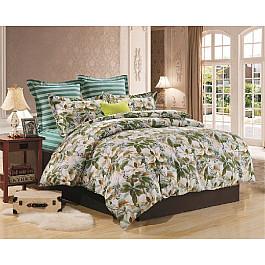 Постельное белье Valtery Комплект постельного белья CL-180-d (2 спальный)