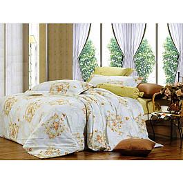 цена Постельное белье СайлиД Комплект постельного белья B-97-p (1.5 спальный) онлайн в 2017 году