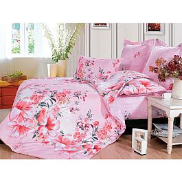 Постельное белье СайлиД Комплект постельного белья B-128-e (Евро) все цены