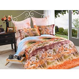 цена Постельное белье СайлиД Комплект постельного белья B-139-p (1.5 спальный) онлайн в 2017 году