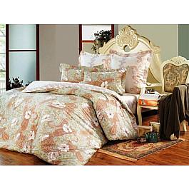цена Постельное белье СайлиД Комплект постельного белья B-121-d (2 спальный) онлайн в 2017 году