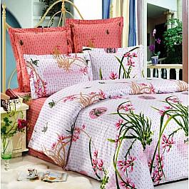 цена Постельное белье СайлиД Комплект постельного белья B-70-p (1.5 спальный) онлайн в 2017 году