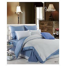 Постельное белье Valtery Комплект постельного белья BS-06-e (Евро) цены онлайн