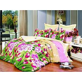 цена Постельное белье СайлиД Комплект постельного белья B-115-p (1.5 спальный) онлайн в 2017 году