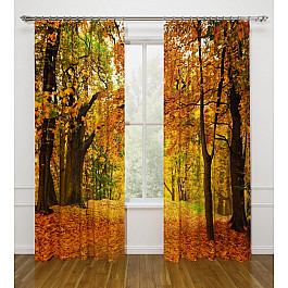 Фотоштора Стильный дом Фотошторы Стильный дом Осенний листопад листопад