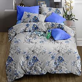 Постельное белье Valtery КПБ софткоттон печатный MP-28 (1.5 спальный) постельное белье valtery кпб софткоттон печатный mp 41 1 5 спальный