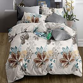Постельное белье Valtery КПБ софткоттон печатный MP-23 (1.5 спальный) постельное белье valtery кпб софткоттон печатный mp 41 1 5 спальный