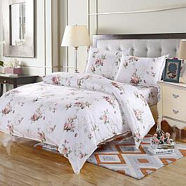 Постельное белье Valtery КПБ поплин AP-13 (2 спальный) цена и фото