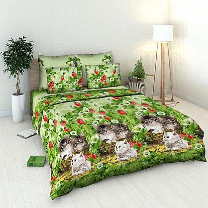 """Комплект постельного белья """"Котята"""" 4313 (v-4313), фото 1"""