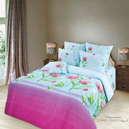 КПБ Евро Lux Cotton 'Romantic' КБR-41 рис. 11562/11563 вид 2 Джульетта (285656), фото 2