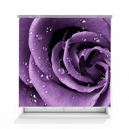 "Рулонная штора ролло термоблэкаут ""Роза фиолет"", 140 см-A (d-105914-A), фото 1"