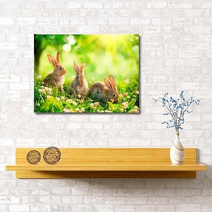 """Картина """"Кролики на полянке"""", 60*40 см (s-102055), фото 1"""