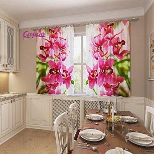 """Фотошторы для кухни """"Прекрасные орхидеи"""""""