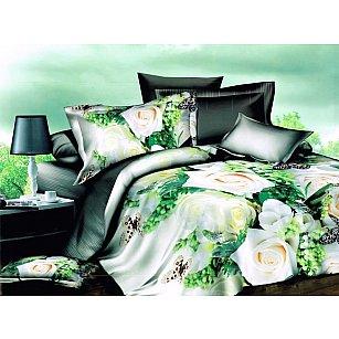 КПБ Микросатин Dream Fly дизайн BF White Roses