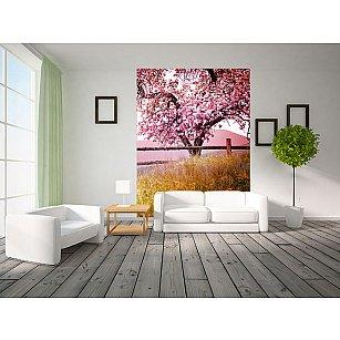 """Фотообои """"Цветущее дерево"""""""