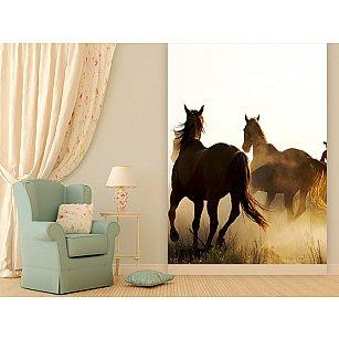 "Фотообои ""Лошади"", 194*270 см-A"