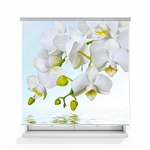 """Рулонная штора ролло лен """"Орхидея над водой"""""""