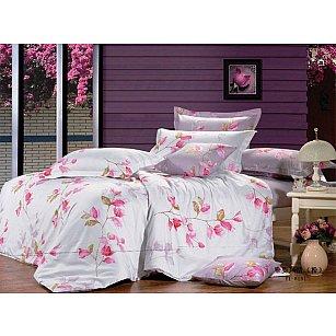 Комплект постельного белья C-120-d (2 спальный)-A