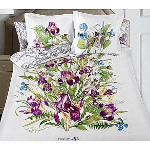 КПБ Secret Gardens Iris