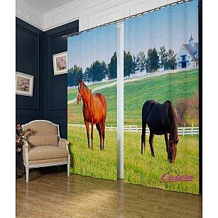 """Фотошторы """"Лошади в поле"""""""