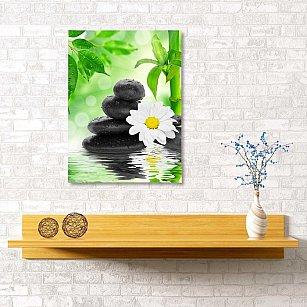 "Картина ""Ромашка на камнях"", 40*60 см"