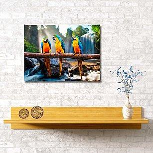 """Картина """" Попугаи"""", 60*40 см"""