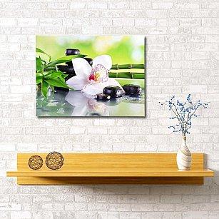 """Картина """"Белая орхидея"""", 60*40 см"""