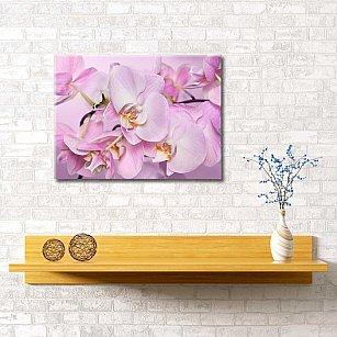 """Картина """"Нежная орхидея"""", 60*40 см"""